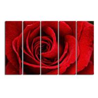 アートパネル 『レッド・ローズ(薔薇)』 25x80cm x 5枚組